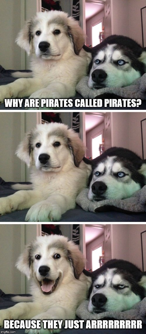 Bad pun dogs | WHY ARE PIRATES CALLED PIRATES? BECAUSE THEY JUST ARRRRRRRRR | image tagged in bad pun dogs,jokes,puns | made w/ Imgflip meme maker