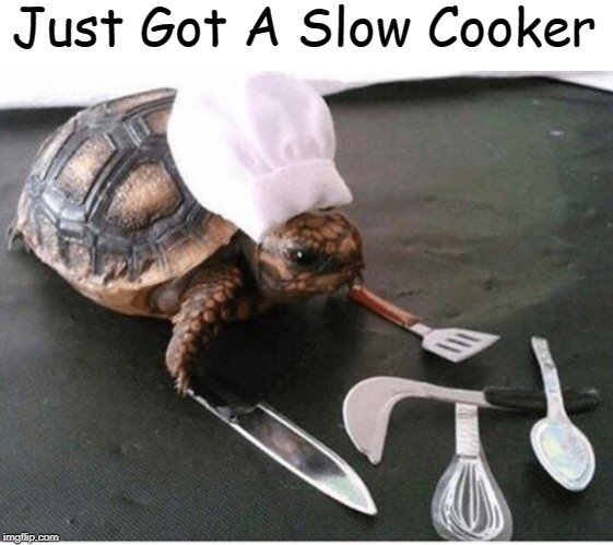 "Hopefully The Meal Will Be ""Pun-Licious"" 