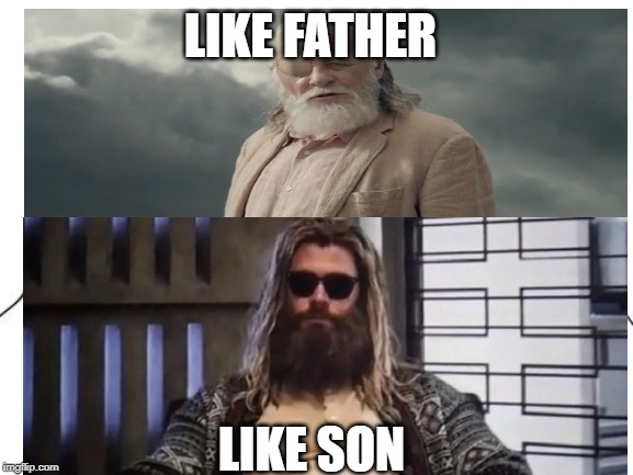 Odin's family breaking apart!! | LIKE FATHER LIKE SON | image tagged in memes,fat thor,avengers endgame,odin | made w/ Imgflip meme maker
