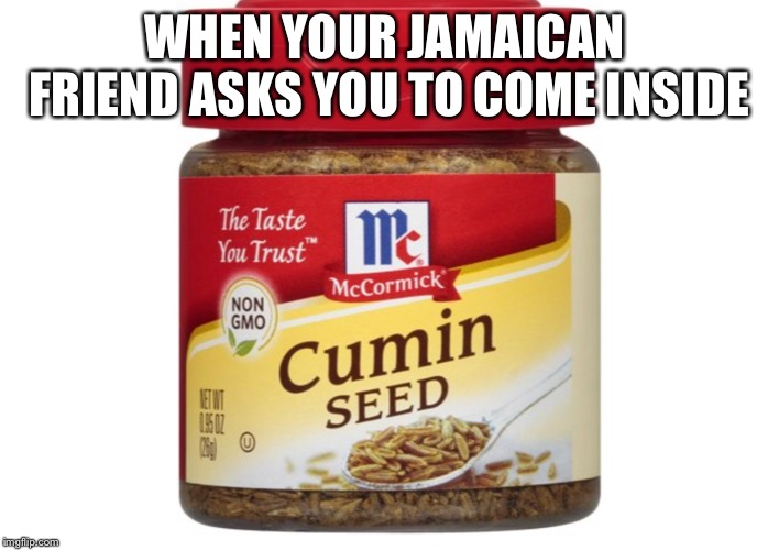 WHEN YOUR JAMAICAN FRIEND ASKS YOU TO COME INSIDE | image tagged in rasta,jamaican,rude boy,ting,mans not hot | made w/ Imgflip meme maker