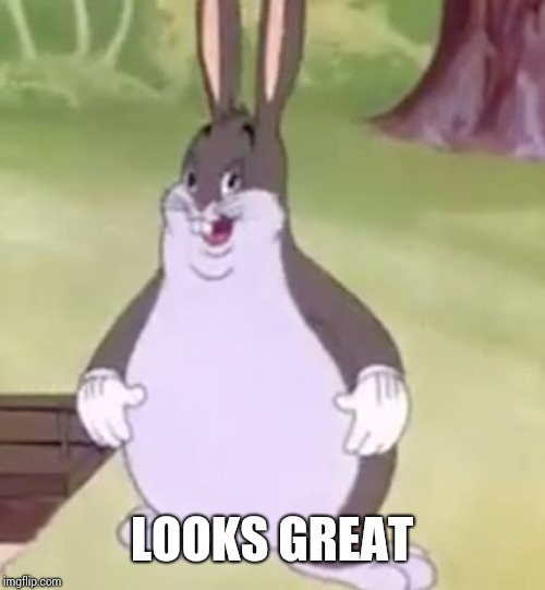 Big Chungus | LOOKS GREAT | image tagged in big chungus | made w/ Imgflip meme maker