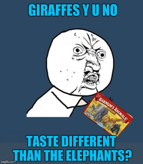 Each animal cracker should have their own unique flavor |  GIRAFFES Y U NO; TASTE DIFFERENT THAN THE ELEPHANTS? | image tagged in memes,y u no,animal crackers,44colt,snacks,open season | made w/ Imgflip meme maker