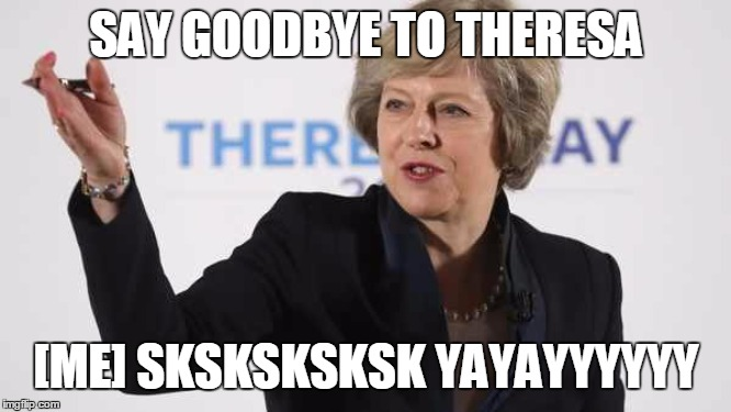 Theresa May PM UK Prime Minister Brexit Wreckzit |  SAY GOODBYE TO THERESA; [ME] SKSKSKSKSK YAYAYYYYYY | image tagged in theresa may pm uk prime minister brexit wreckzit | made w/ Imgflip meme maker