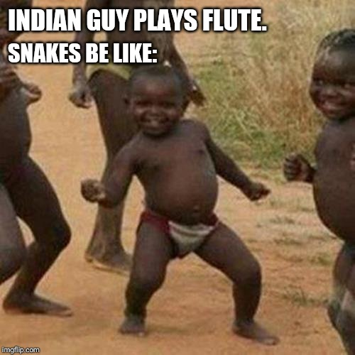 Third World Success Kid Meme | INDIAN GUY PLAYS FLUTE. SNAKES BE LIKE: | image tagged in memes,third world success kid | made w/ Imgflip meme maker