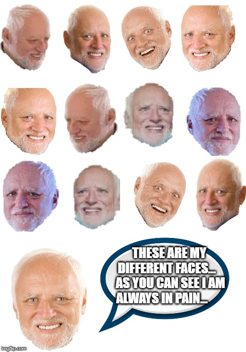 Harold's faces | THESE ARE MY DIFFERENT FACES...    AS YOU CAN SEE I AM ALWAYS IN PAIN... | image tagged in memes,funny,hide the pain harold,harold,faces,pain | made w/ Imgflip meme maker