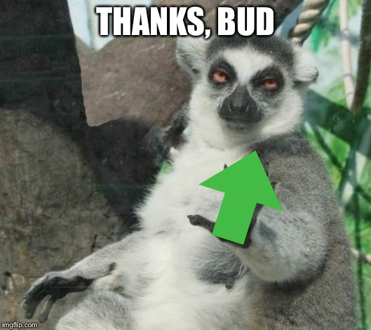 Stoner Lemur Meme | THANKS, BUD | image tagged in memes,stoner lemur | made w/ Imgflip meme maker