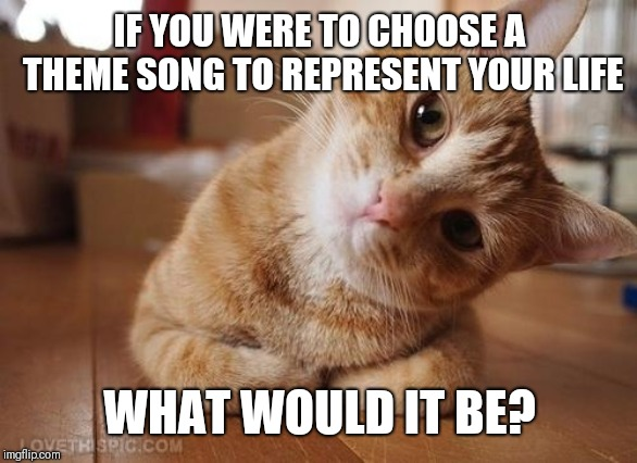 Curious Question Cat | IF YOU WERE TO CHOOSE A THEME SONG TO REPRESENT YOUR LIFE WHAT WOULD IT BE? | image tagged in curious question cat | made w/ Imgflip meme maker