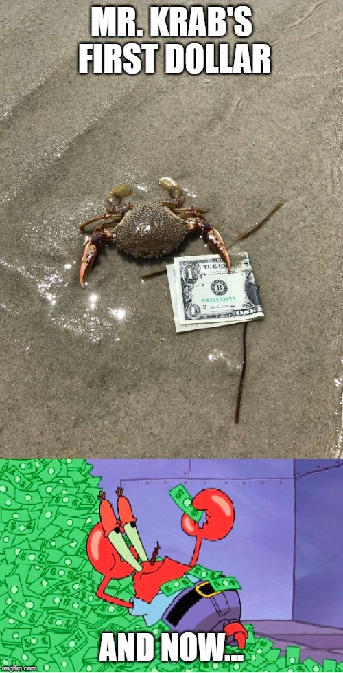 Mr. Krab - successful businessman | MR. KRAB'S FIRST DOLLAR AND NOW... | image tagged in mr krabs | made w/ Imgflip meme maker