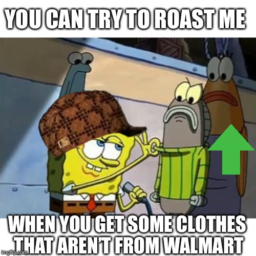 Roasted | YOU CAN TRY TO ROAST ME WHEN YOU GET SOME CLOTHES THAT AREN'T FROM WALMART | image tagged in roasted | made w/ Imgflip meme maker