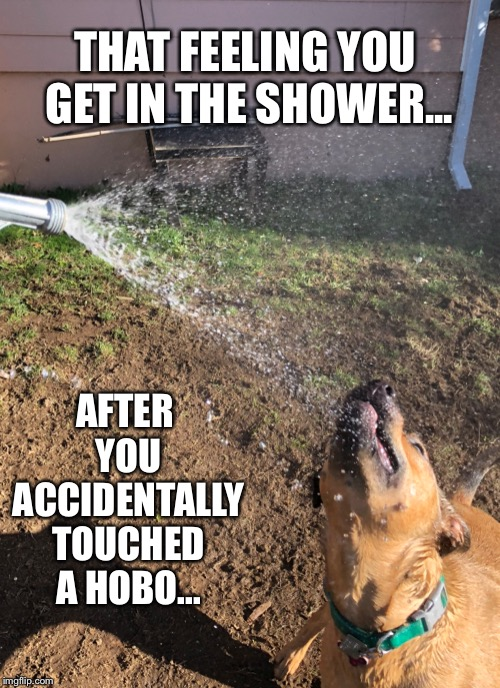 That shower feeling | THAT FEELING YOU GET IN THE SHOWER... AFTER YOU ACCIDENTALLY TOUCHED A HOBO... | image tagged in shower,dirty,clean,hobo,ahhhhh,feels good man | made w/ Imgflip meme maker