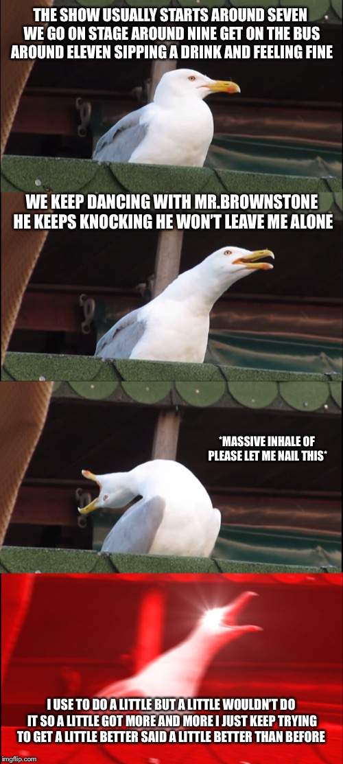 Inhaling Seagull Meme | THE SHOW USUALLY STARTS AROUND SEVEN WE GO ON STAGE AROUND NINE GET ON THE BUS AROUND ELEVEN SIPPING A DRINK AND FEELING FINE WE KEEP DANCIN | image tagged in memes,inhaling seagull | made w/ Imgflip meme maker