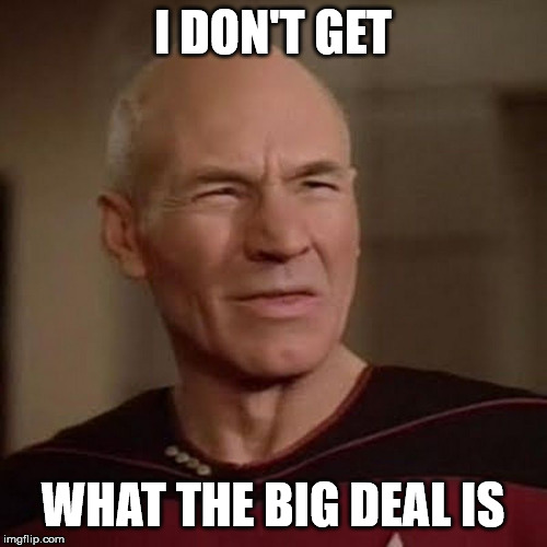 I DON'T GET WHAT THE BIG DEAL IS | image tagged in picard wtf | made w/ Imgflip meme maker