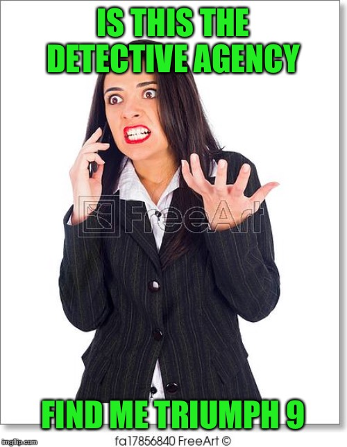 IS THIS THE DETECTIVE AGENCY FIND ME TRIUMPH 9 | made w/ Imgflip meme maker