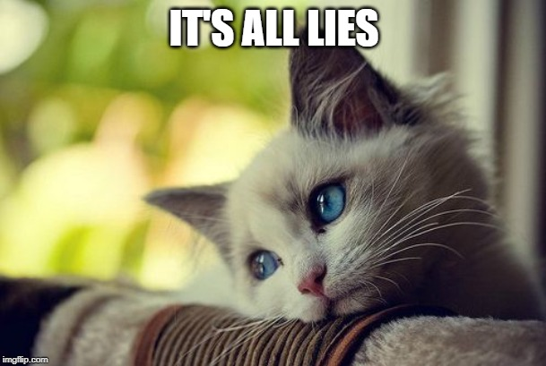 First World Problems Cat Meme | IT'S ALL LIES | image tagged in memes,first world problems cat | made w/ Imgflip meme maker