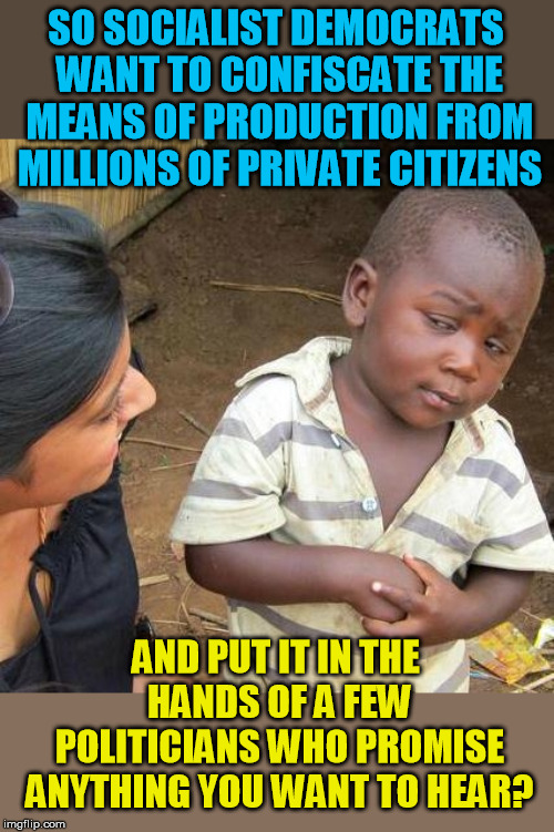 Golly! Where do I sign up? | SO SOCIALIST DEMOCRATS WANT TO CONFISCATE THE MEANS OF PRODUCTION FROM MILLIONS OF PRIVATE CITIZENS AND PUT IT IN THE HANDS OF A FEW POLITIC | image tagged in memes,third world skeptical kid | made w/ Imgflip meme maker