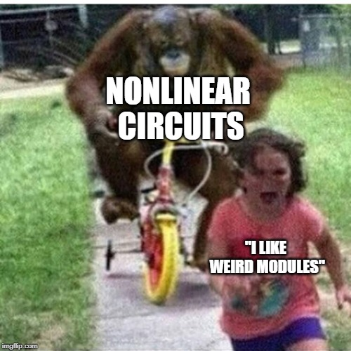 "NONLINEAR CIRCUITS ""I LIKE WEIRD MODULES"" 