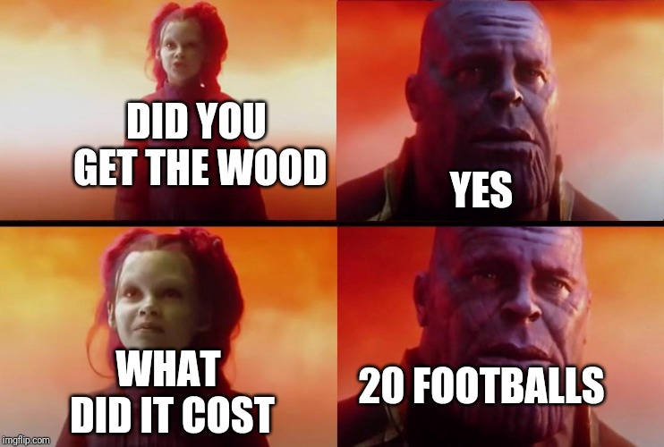 thanos what did it cost |  DID YOU GET THE WOOD; YES; 20 FOOTBALLS; WHAT DID IT COST | image tagged in thanos what did it cost | made w/ Imgflip meme maker