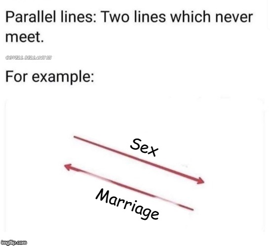 Sex Marriage | image tagged in parallel lines that will never meet sex marriage | made w/ Imgflip meme maker