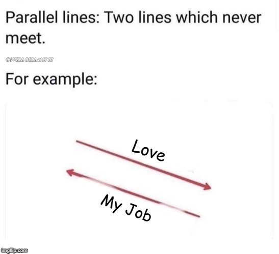Parallel Lines That Will Never Meet Love My Job | Love My Job | image tagged in parallel lines that will never meet love my job | made w/ Imgflip meme maker