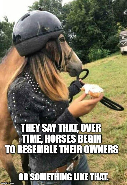 At least the horse is wearing its helmet. | THEY SAY THAT, OVER TIME, HORSES BEGIN TO RESEMBLE THEIR OWNERS OR SOMETHING LIKE THAT. | image tagged in horse,funny | made w/ Imgflip meme maker