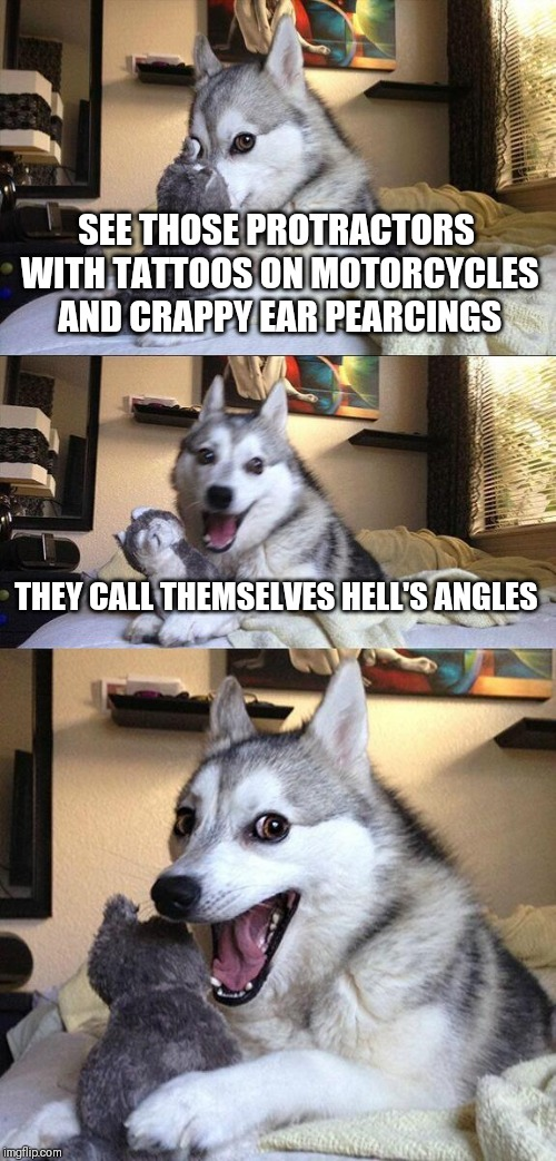 Bad Pun Dog Meme | SEE THOSE PROTRACTORS WITH TATTOOS ON MOTORCYCLES AND CRAPPY EAR PEARCINGS THEY CALL THEMSELVES HELL'S ANGLES | image tagged in memes,bad pun dog | made w/ Imgflip meme maker
