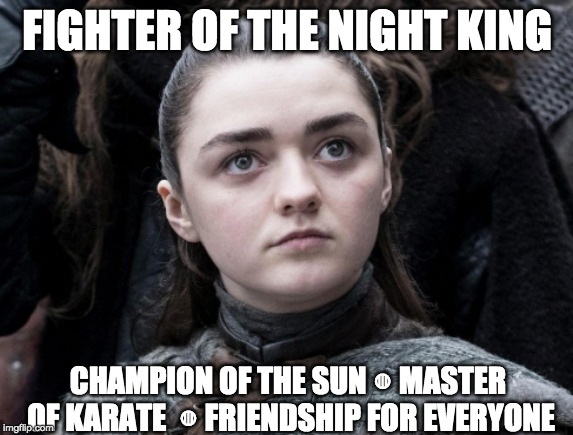 FIGHTER OF THE NIGHT KING CHAMPION OF THE SUN ◍ MASTER OF KARATE  ◍ FRIENDSHIP FOR EVERYONE | image tagged in game of thrones night king,it's always sunny in philidelphia,arya stark | made w/ Imgflip meme maker