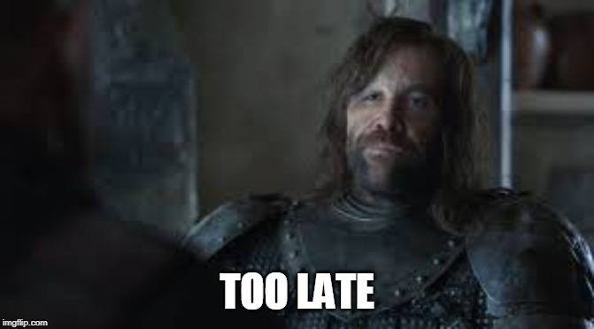 The Hound | TOO LATE | image tagged in the hound | made w/ Imgflip meme maker