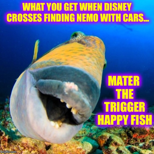 What do you get when you cross... | WHAT YOU GET WHEN DISNEY CROSSES FINDING NEMO WITH CARS... MATER THE TRIGGER HAPPY FISH | image tagged in disney,finding nemo,cars | made w/ Imgflip meme maker