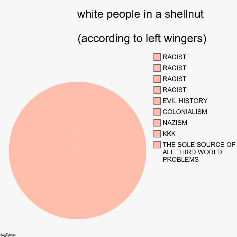 white people in a shellnut                                                                                               (according to left  | image tagged in charts,pie charts | made w/ Imgflip chart maker