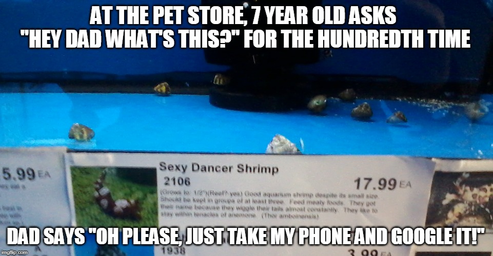 "From the Parenting-Fail Hall of Fame | AT THE PET STORE, 7 YEAR OLD ASKS ""HEY DAD WHAT'S THIS?"" FOR THE HUNDREDTH TIME DAD SAYS ""OH PLEASE, JUST TAKE MY PHONE AND GOOGLE IT!"" 