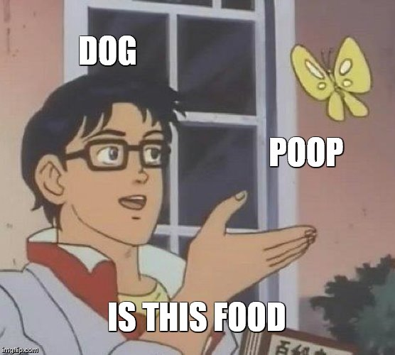 Is This A Pigeon Meme | DOG POOP IS THIS FOOD | image tagged in memes,is this a pigeon | made w/ Imgflip meme maker