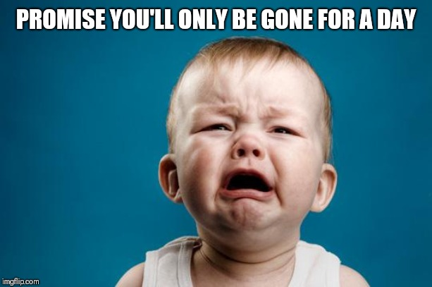 BABY CRYING | PROMISE YOU'LL ONLY BE GONE FOR A DAY | image tagged in baby crying | made w/ Imgflip meme maker