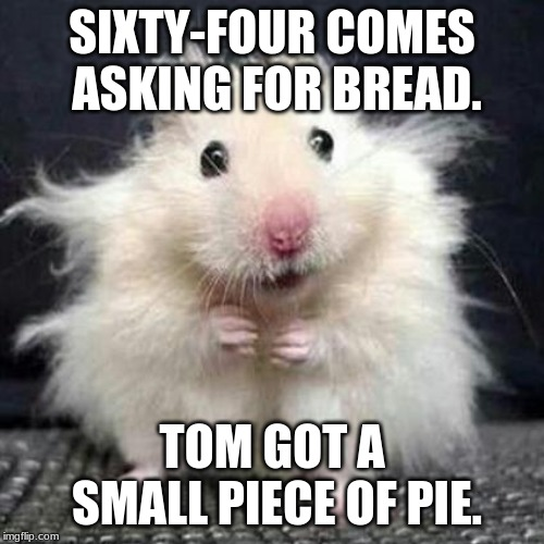 Stressed Mouse |  SIXTY-FOUR COMES ASKING FOR BREAD. TOM GOT A SMALL PIECE OF PIE. | image tagged in stressed mouse | made w/ Imgflip meme maker