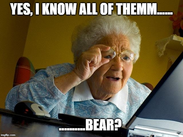 YES, I KNOW ALL OF THEMM...... ..........BEAR? | image tagged in memes,grandma finds the internet | made w/ Imgflip meme maker
