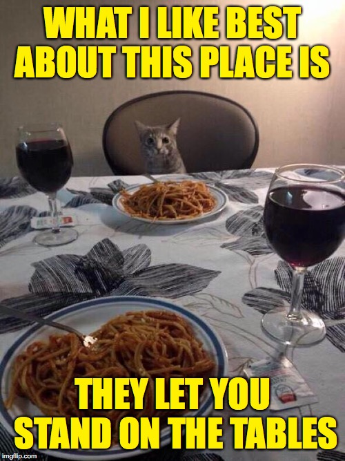 Bon appetit! | WHAT I LIKE BEST ABOUT THIS PLACE IS THEY LET YOU STAND ON THE TABLES | image tagged in cat dinner,memes,bon appetit | made w/ Imgflip meme maker