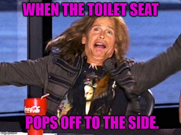 You know the feeling! |  WHEN THE TOILET SEAT; POPS OFF TO THE SIDE. | image tagged in nixieknox,memes,steven tyler | made w/ Imgflip meme maker
