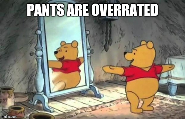 Happy Pooh Bear | PANTS ARE OVERRATED | image tagged in happy pooh bear | made w/ Imgflip meme maker