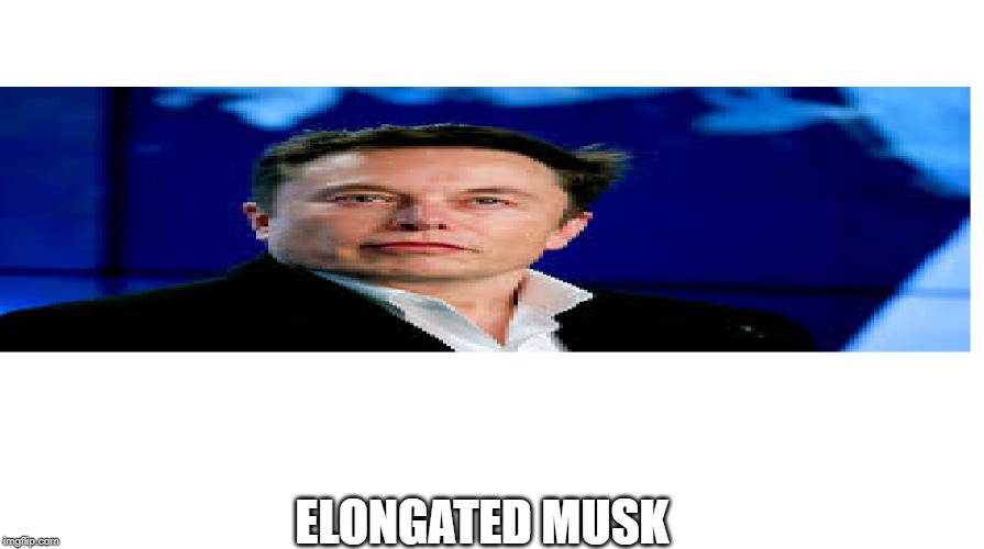 elongated musk plz help | ELONGATED MUSK | image tagged in elongated musk | made w/ Imgflip meme maker