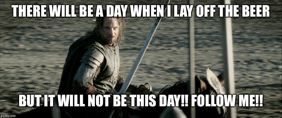 Not Today Lord Of The Rings | THERE WILL BE A DAY WHEN I LAY OFF THE BEER BUT IT WILL NOT BE THIS DAY!! FOLLOW ME!! | image tagged in not today lord of the rings | made w/ Imgflip meme maker