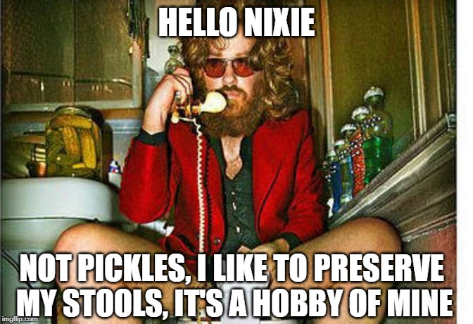 HELLO NIXIE NOT PICKLES, I LIKE TO PRESERVE MY STOOLS, IT'S A HOBBY OF MINE | made w/ Imgflip meme maker