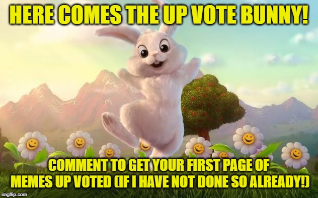 "Also, please do not forget to up vote the other memes in the ""begging for up votes"" stream! 