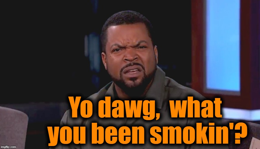 Really? Ice Cube | Yo dawg,  what you been smokin'? | image tagged in really ice cube | made w/ Imgflip meme maker