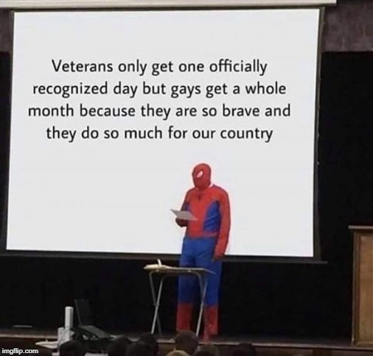 Because they do so much | image tagged in veterans,gays,pride month | made w/ Imgflip meme maker