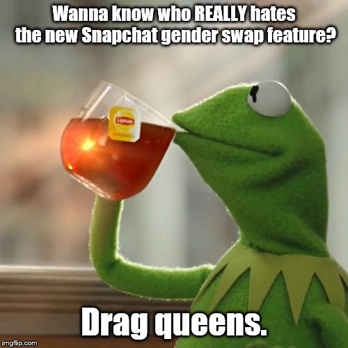 But Thats None Of My Business | Wanna know who REALLY hates the new Snapchat gender swap feature? Drag queens. | image tagged in memes,but thats none of my business,kermit the frog,snapchat,did you just assume my gender | made w/ Imgflip meme maker