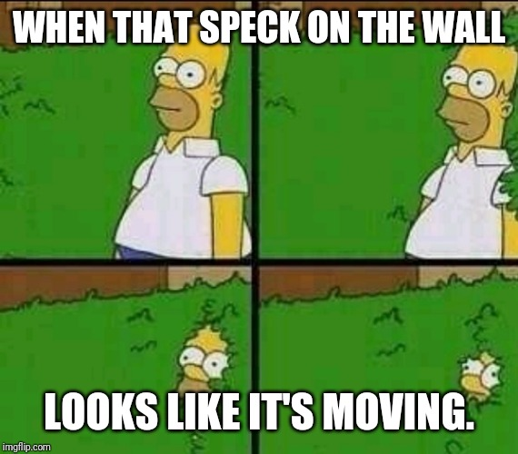 Homer Simpson Nope |  WHEN THAT SPECK ON THE WALL; LOOKS LIKE IT'S MOVING. | image tagged in homer simpson nope | made w/ Imgflip meme maker