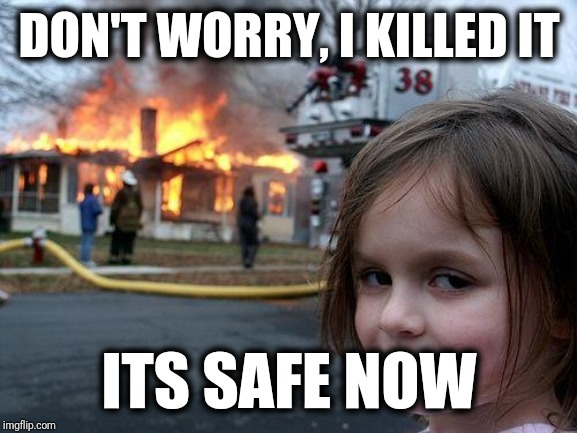 Disaster Girl Meme | DON'T WORRY, I KILLED IT ITS SAFE NOW | image tagged in memes,disaster girl | made w/ Imgflip meme maker