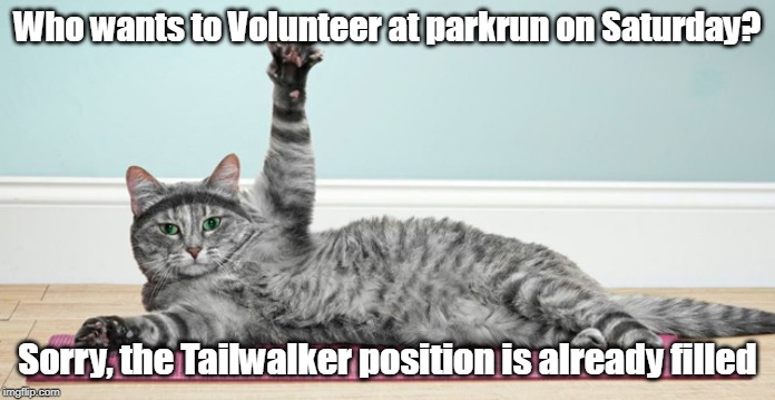 Tailwalker Cat | Who wants to Volunteer at parkrun on Saturday? Sorry, the Tailwalker position is already filled | image tagged in cat,tailwalker,parkrun | made w/ Imgflip meme maker