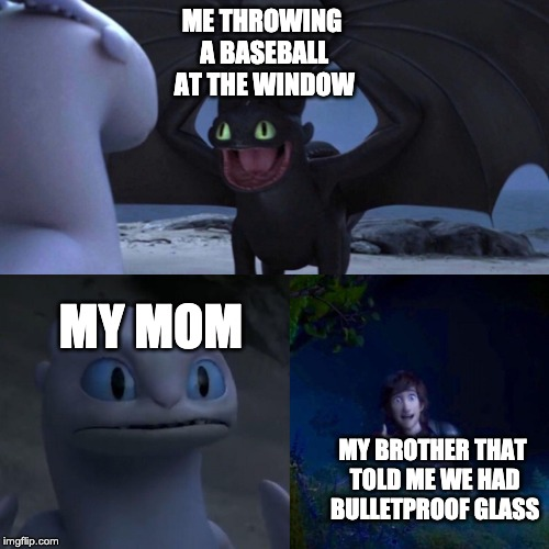 night fury | ME THROWING A BASEBALL AT THE WINDOW MY MOM MY BROTHER THAT TOLD ME WE HAD BULLETPROOF GLASS | image tagged in night fury | made w/ Imgflip meme maker
