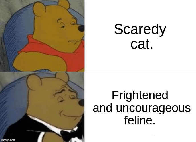 Tuxedo Winnie The Pooh Meme | Scaredy cat. Frightened and uncourageous feline. | image tagged in memes,tuxedo winnie the pooh | made w/ Imgflip meme maker