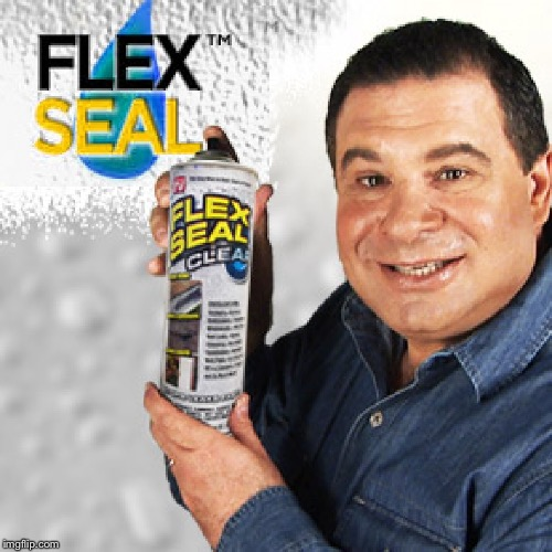 Flex Seal | image tagged in flex seal | made w/ Imgflip meme maker